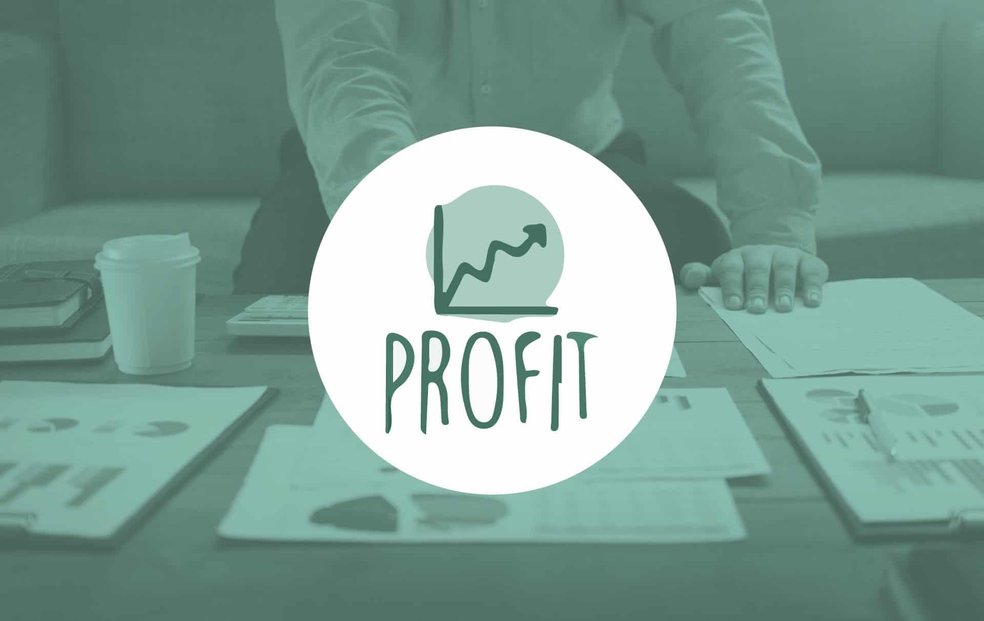 mvo-profit